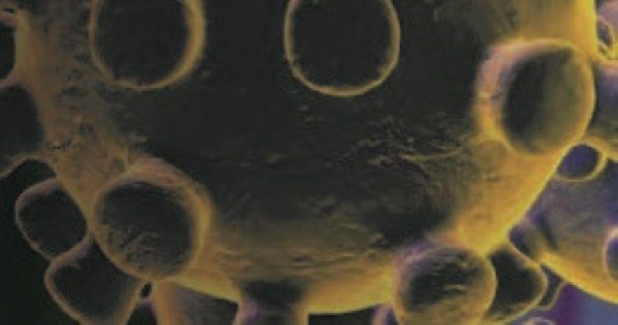 Center banner coronavirus