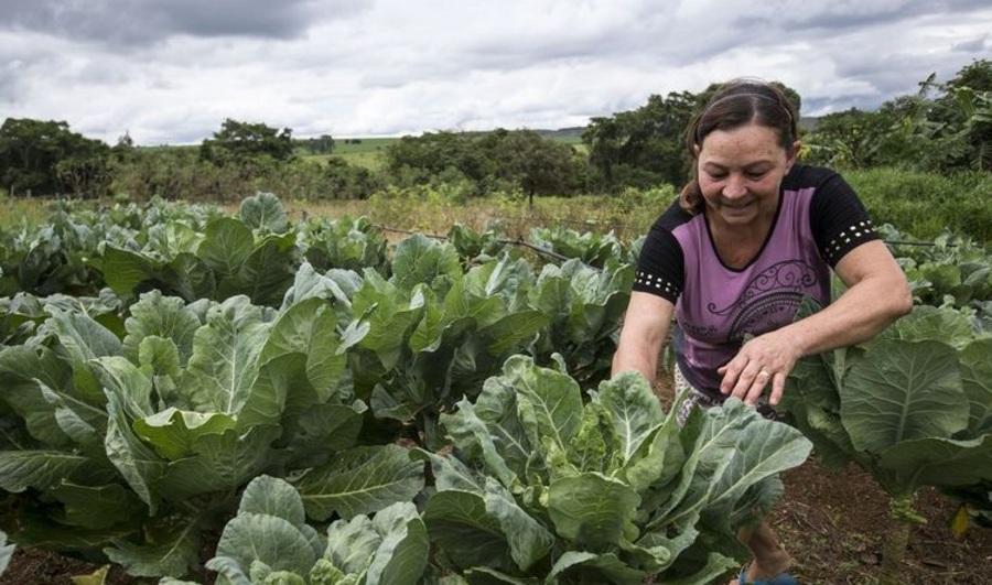 Center mulher rural