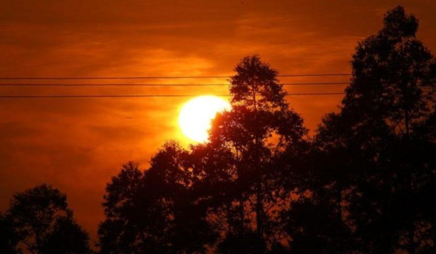 Center sol foto edemir rodrigues 768x425 1 730x425