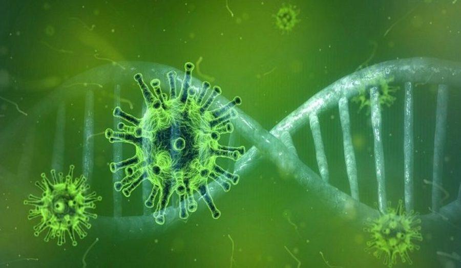 Center coronavirus 768x425 730x425